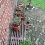 Cheap bonsai stand