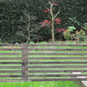 bench-9