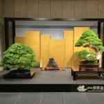 World Bonsai Convention 2017